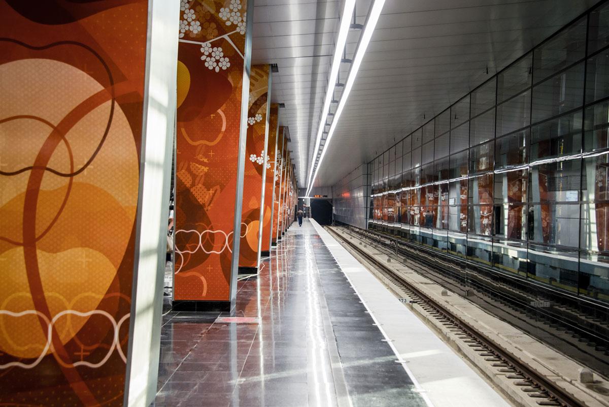 Станция метро «Мичуринский проспект»